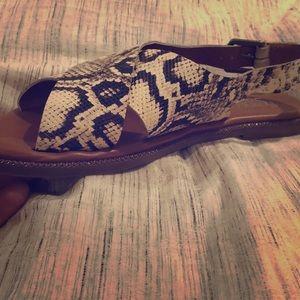 Size 8.5 snakeskin style Franco Sarto sandals